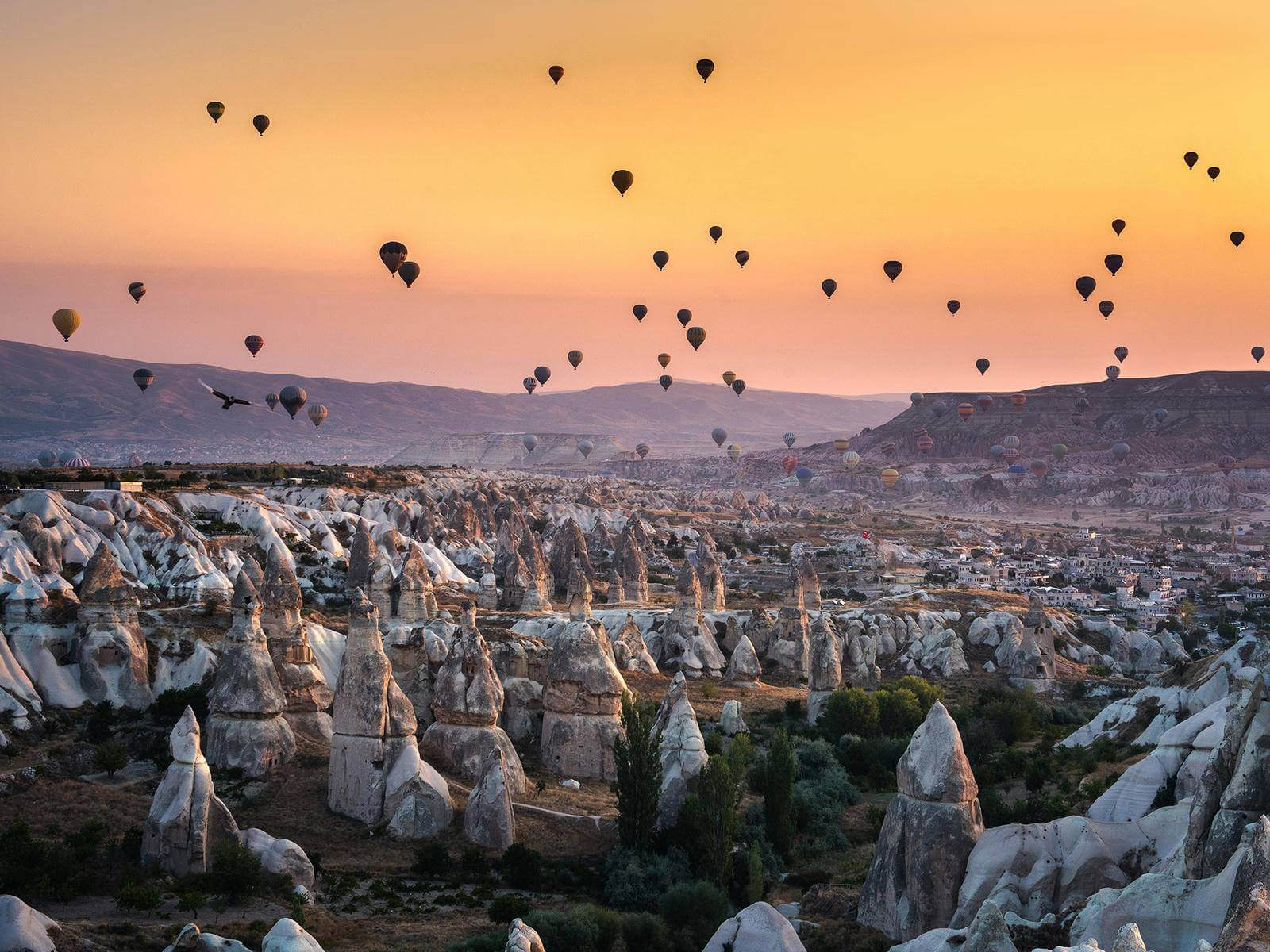 hot air balloons, rock formations, sunset